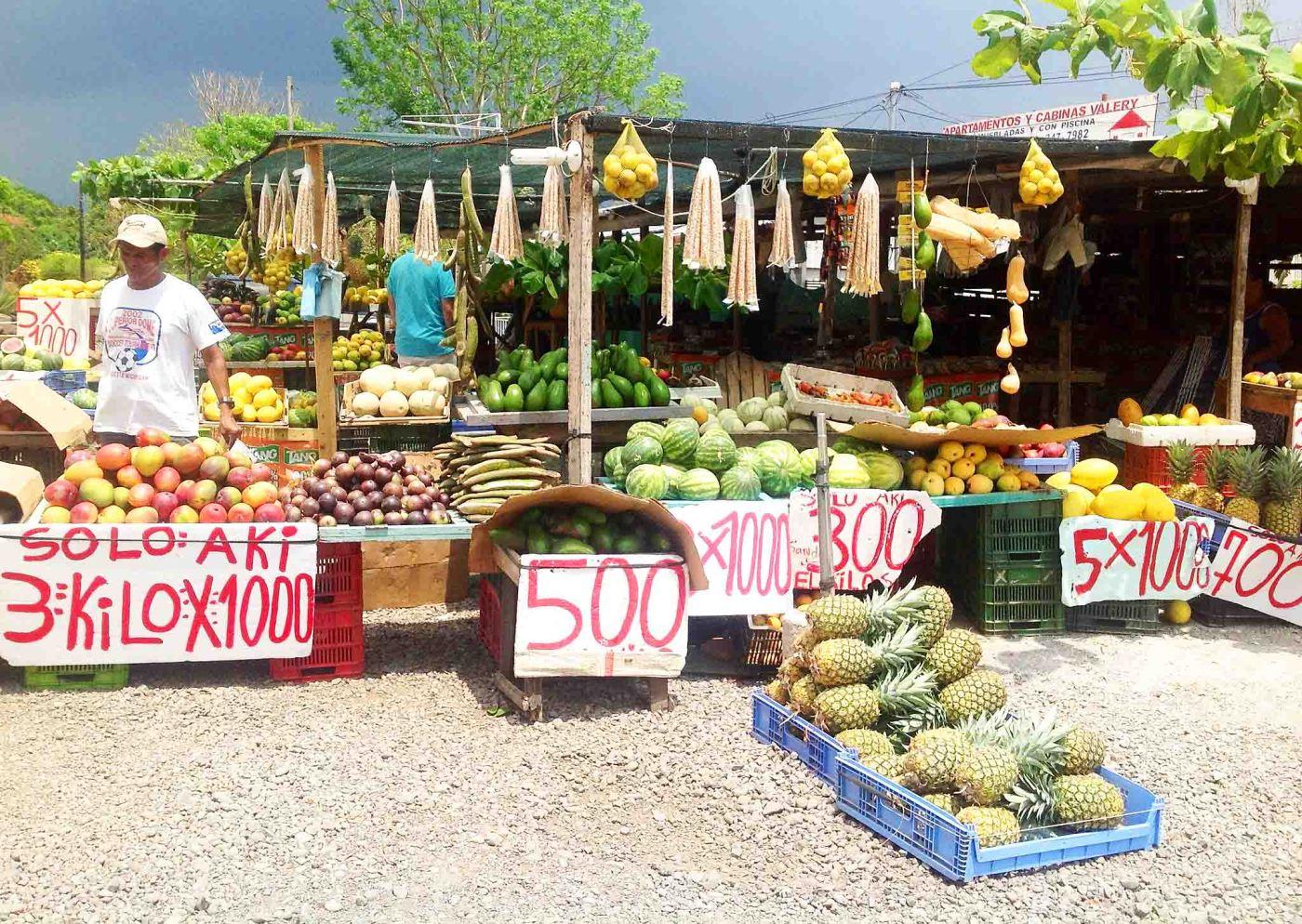 Costa Rica, Pura Vida! Chasing Pineapples food travel
