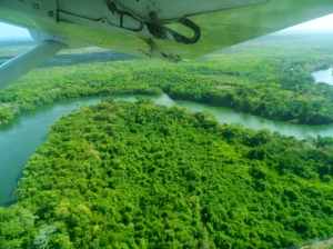 Jungle Sites from our Tiny Plane