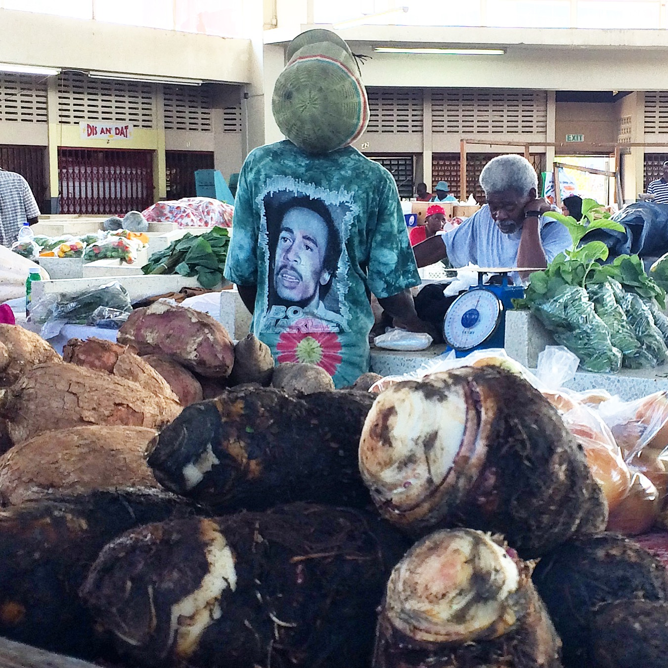 Dasheen at Scarborough Market, Tobago